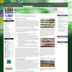 LSUAGCENTER - 2001 - Integrated Pest Management in Sugarcane