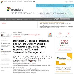 FRONTIERS IN PLANT SCIENCE 20/07/17 Bacterial Diseases of Bananas and Enset: Current State of Knowledge and Integrated Approaches Toward Sustainable Management