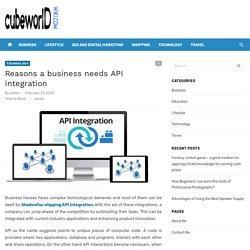 Reasons a business needs API integration – cubeworldwiki