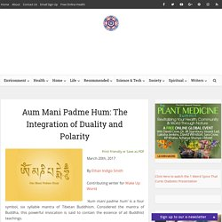 Aum Mani Padme Hum: The Integration of Duality and Polarity