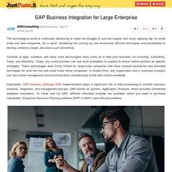 SAP Business Integration for Large Enterprise
