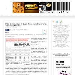 L'état de l'intégration du Social Media marketing dans les entreprises (eMarketer)