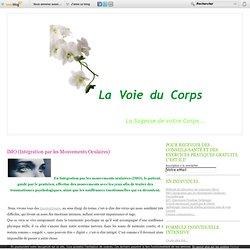 Article/ IMO (Intégration par les Mouvements Oculaires)