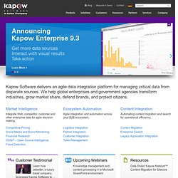 Enterprise Application Integration & Process Automation - Kapow Software