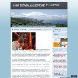 Blogue de Doudou Sow (Intégration professionnelle)