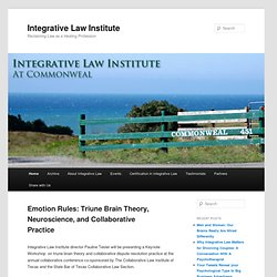 Integrative Law Institute