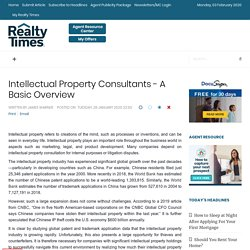 Intellectual Property Consultants - A Basic Overview