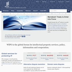 World Intellectual Property Organization