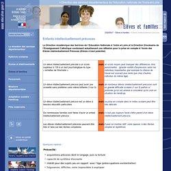 Direction des services départementaux de l'éducation nationale de l'Indre-et-Loire:Enfants intellectuellement précoces
