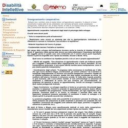 Disabilità Intellettive - Insegnamento cooperativo