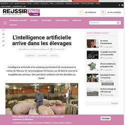 REUSSIR 10/10/19 L'intelligence artificielle arrive dans les élevages