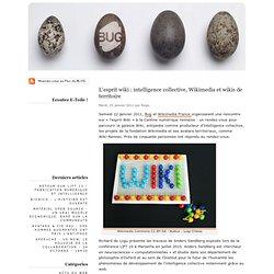 L'esprit wiki : intelligence collective, Wikimedia et wikis de territoire