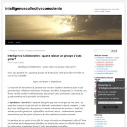 Intelligence Collaborative : quand laisser un groupe s'auto-gérer?