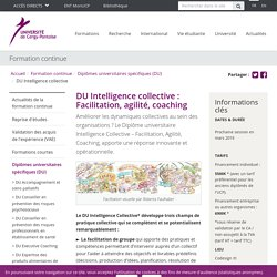 DU Intelligence collective - Université de Cergy-Pontoise