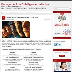 L'intelligence collective animale... un mythe ?