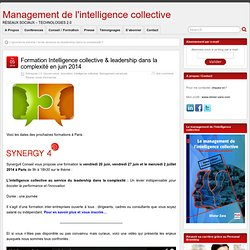 Formation Intelligence collective & leadership dans la complexité en juin 2014