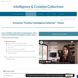 Formation Intelligence Collective