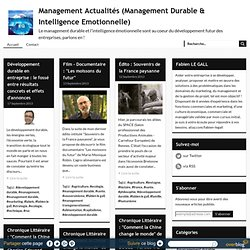 management-durable-et-intelligence-emotionnelle.overblog.com