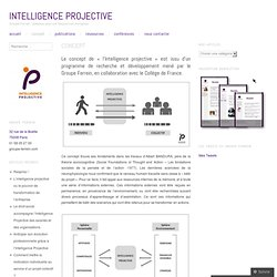 Intelligence Projective