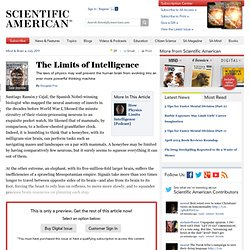 The Limits of Intelligence