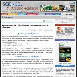 Panorama du QI : L'intelligence en 6 questions et 6 réponses par Nicolas Gauvrit