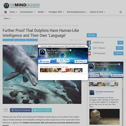 the behavior of humans demonstrates that they are the most intelligent species essay Contact is not more apparent to ethicists is that discussion of central issues   predetermine that only humans would ever be able to demonstrate that trait or  ability  intelligent species, which strongly suggests that they are capable of  acting for  given what seems reasonable to speculate on the basis of dolphin  behavior.