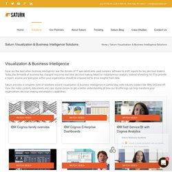 Saturn Visualization & Business Intelligence Solutions NY
