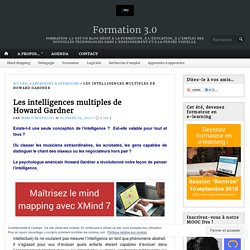 Les intelligences multiples de Howard Gardner – Formation 3.0
