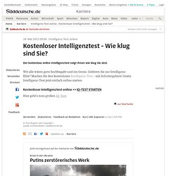 Intelligenztest pdf