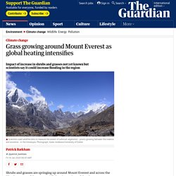 Grass growing around Mount Everest as global heating intensifies