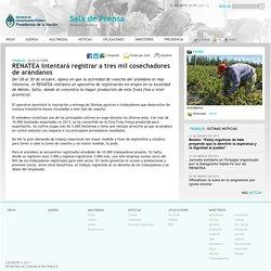 RENATEA intentará registrar a tres mil cosechadores de arándanos