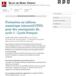 Formation au tableau numérique interactif (TNI) pour des enseignants du cycle 1 - Lycée français - Blog de Marc Oddou