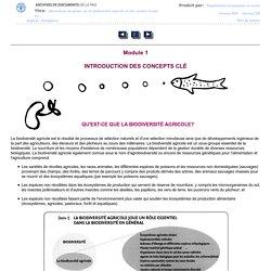 Interactions du genre, de la biodiversité agricole et des savoirs locaux au service de la sécurité alimentaire - Manuel de formation