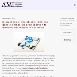 Interactions of microbiome, diet, and genetics modulate predispostion to diabetes and metabolic syndrome — The American Microbiome Institute