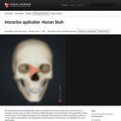 "Interactive application ""Human Skull"""