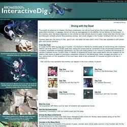 Interactive Dig Yucatán