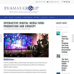 INTERACTIVE DIGITAL MEDIA FUND: Production and Concept