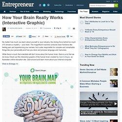 Comment votre cerveau fonctionne vraiment (Graphique interactif)