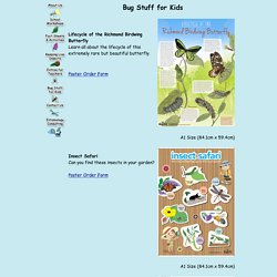 Bugs Ed - Interactive insect workshops for all ages