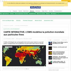 CARTE INTERACTIVE. L'OMS modélise la pollution mondiale aux particules fines