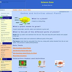 Plants - Interactive Science Games and Activities