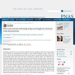 Penis size interacts with body shape and height to influence male attractiveness