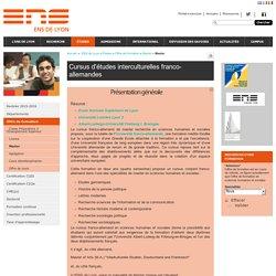 Cursus d'études interculturelles franco-allemandes