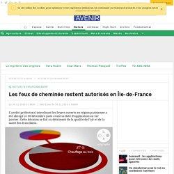 """""""Ridicule"""" l'interdiction des feux de cheminées dans Paris ? Pourquoi Ségolène Royal se trompe"""