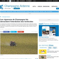 France 3 Champagne-Ardenne