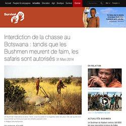 Interdiction de la chasse au Botswana : tandis que les Bushmen meurent de faim, les safaris sont autorisés