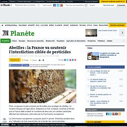 Abeilles : la France va soutenir l'interdiction ciblée de pesticides