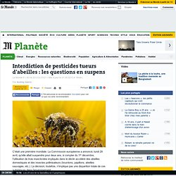 Interdiction de pesticides tueurs d'abeilles : les questions en suspens