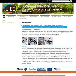 Laboratoire interdisciplinaire des environnements continentaux