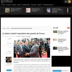 Le Gabon interdit l'importation des poulets de France